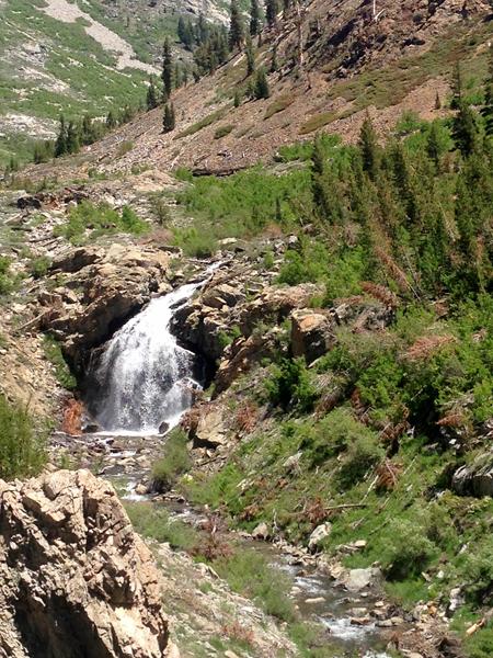 Trail shower