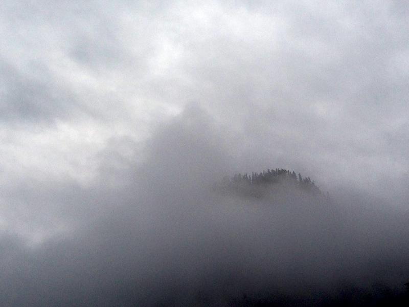 My northern Washington