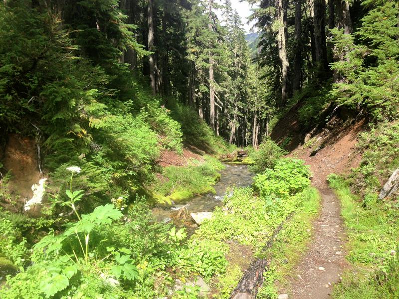 Stream and trail through narrow mountain split