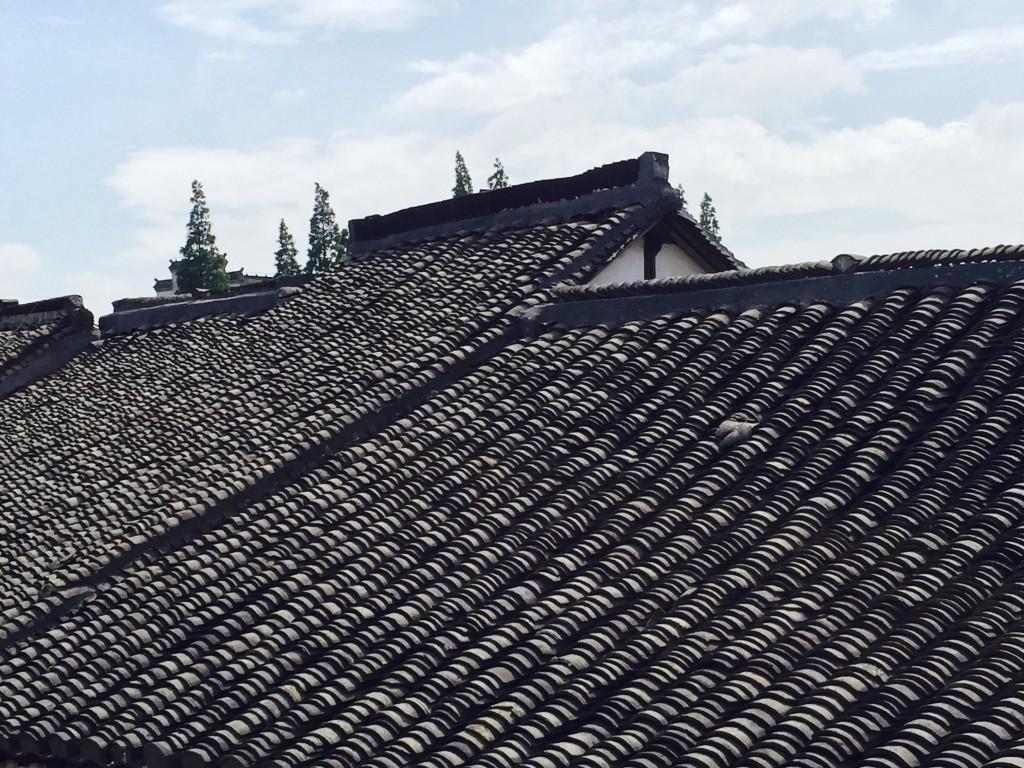 Shanghai_FullSizeRender-7_rooftop