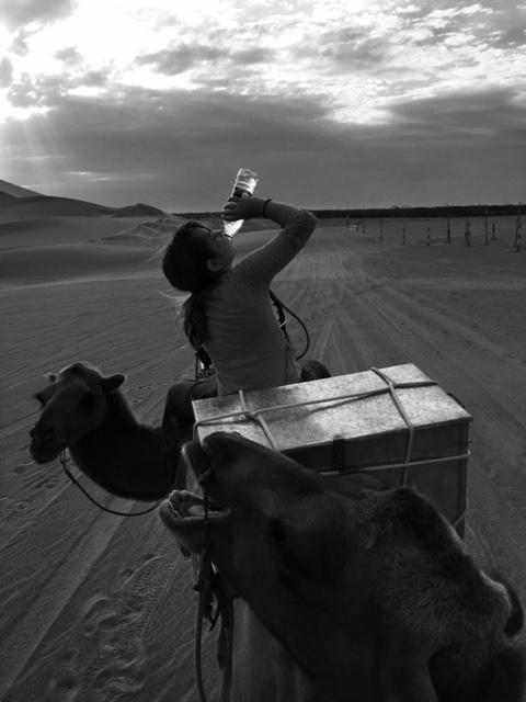 Halteman_Camel Ride_1_FullSizeRender-1