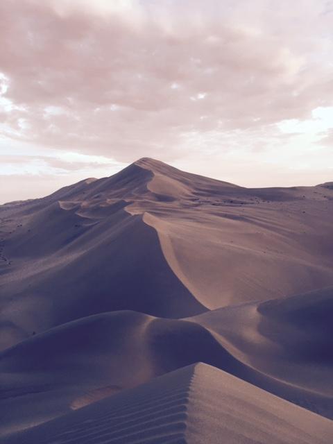 Halteman_Camel Ride_3_FullSizeRender-9